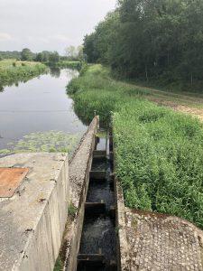 20190603-grasdorfer-vechtewehr-fischtreppe1